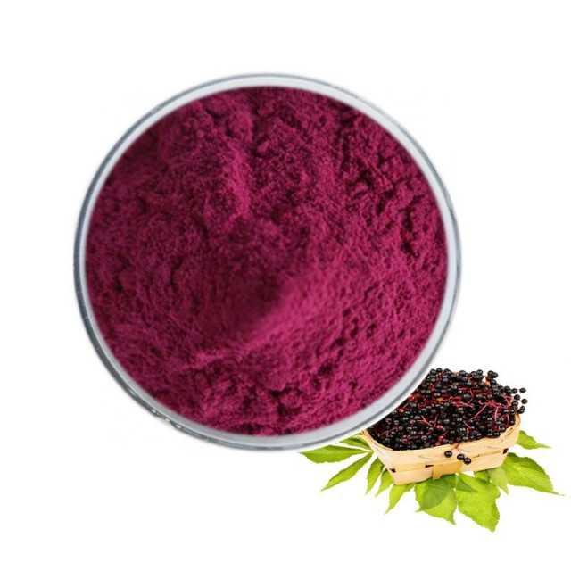 Best Price Anthocyanidins, Black Elderberry Extract Powder