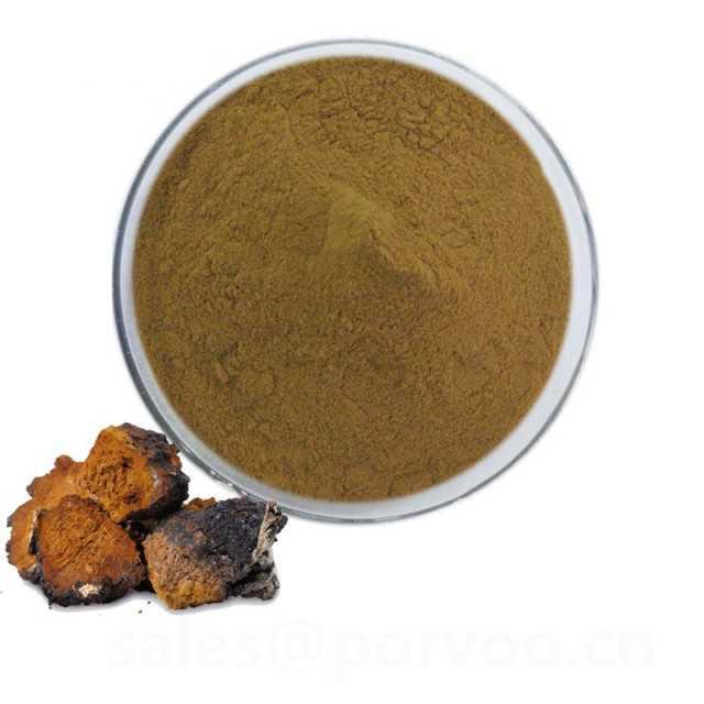 Natural Siberian Chaga Mushroom Extract Powder, chaga mushroom extract
