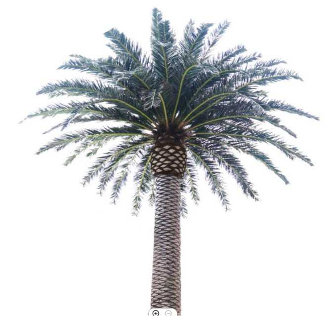 Haihong Artificial Palm Tree