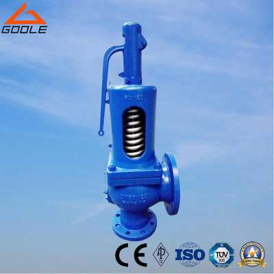 DIN 900 Series Spring Loaded Safety Relief Valve