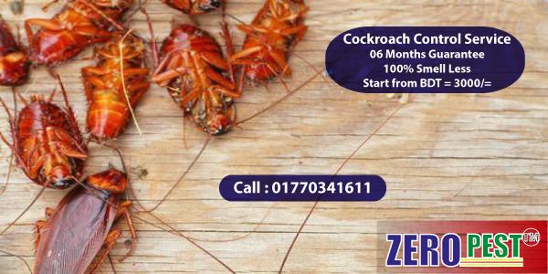 Cockroach Control Service