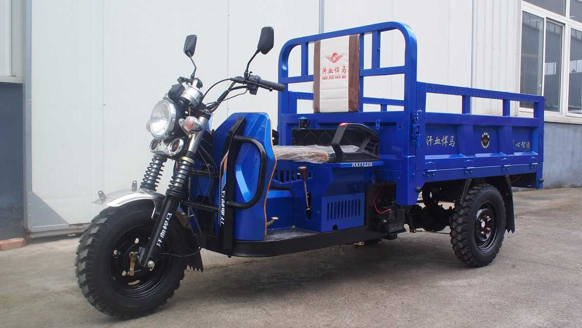 Fuel tricycle for cargo