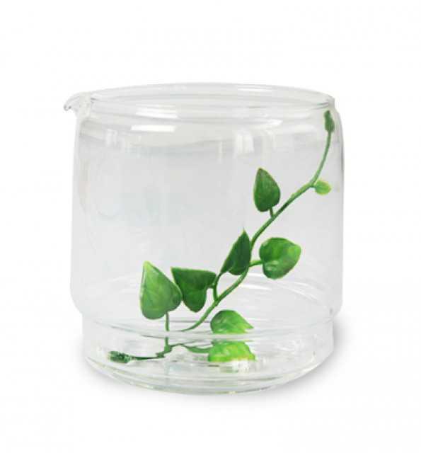 Glass Coffee Pots