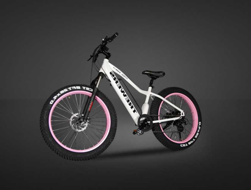 Electric bike/pedelec-TS-EB003