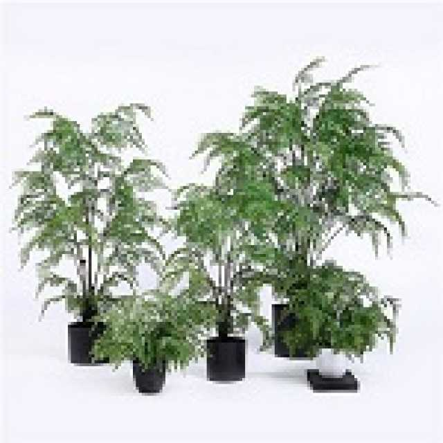 Popular Faux Fern Tree