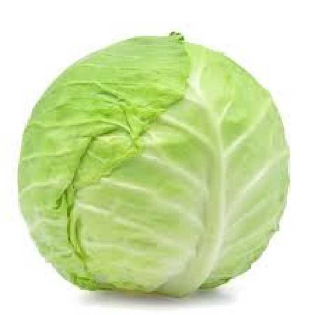 img 1 Cabbage