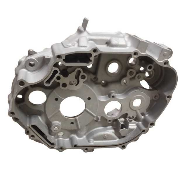 OEM Factory of Aluminium Oxidation Casting Auto Parts From China