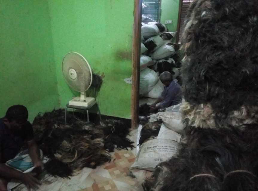 hair sorting4