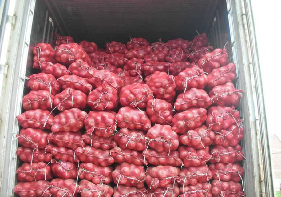 Fruits and vegetables from Pakistan (Onion)