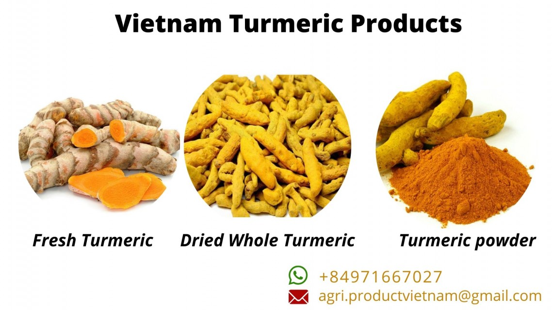 Vietnam Turmeric export products