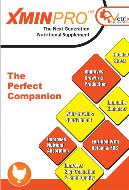 XMINPRO-The Next Generation Nutritional Supplement