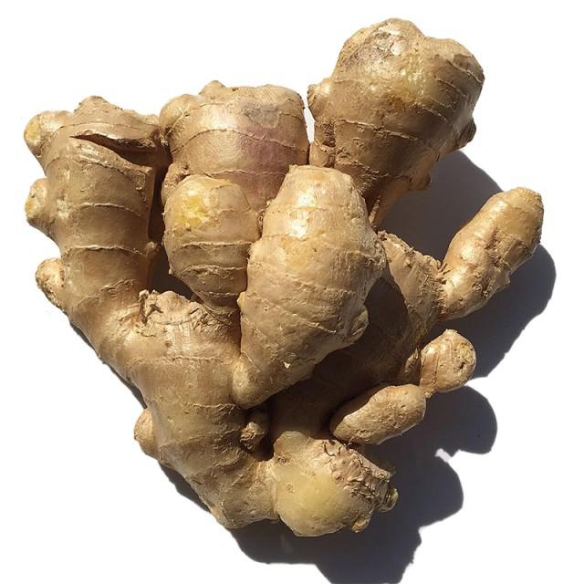 Ginger Fresh Organic
