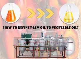 SGS certificate 1-5tpd small scale edible oil refinery machine