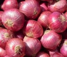 Onion, Tomatoes, Potatoes, etc
