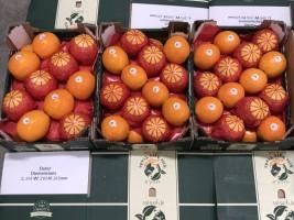 Egyptian Citrus, Orange & Limon