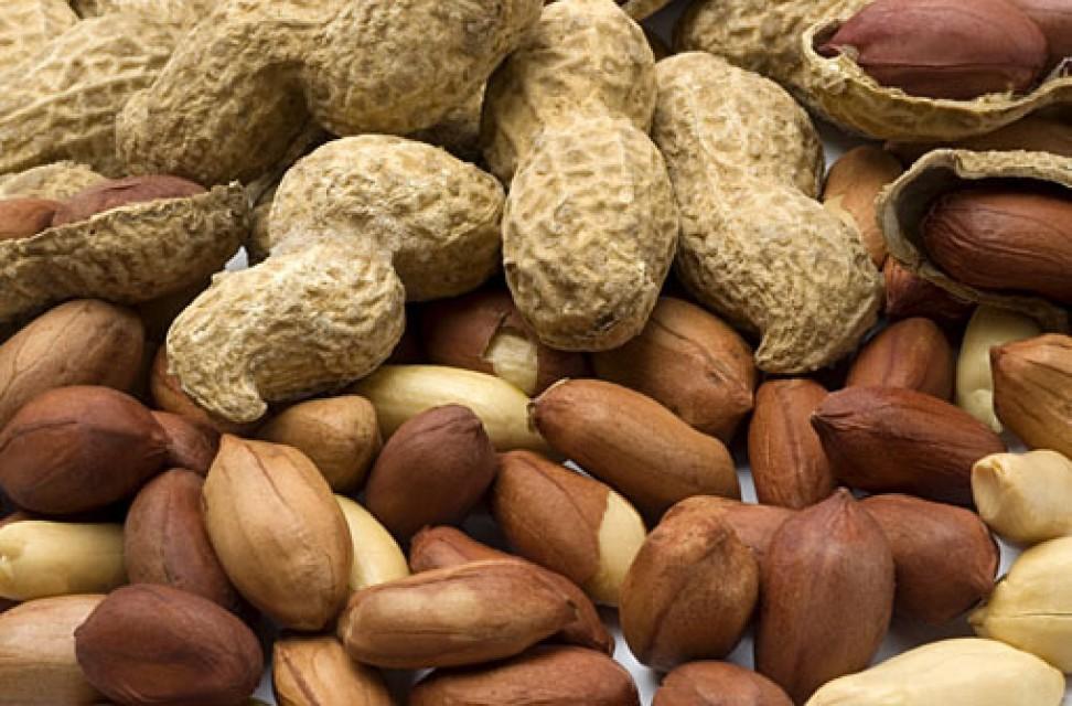 Peanut / Groundnut