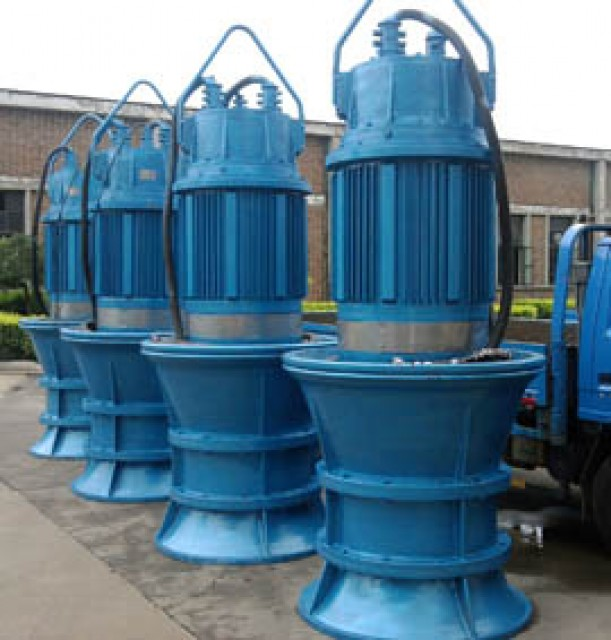 Axial Flow Pump   (Submersible propeller pump)