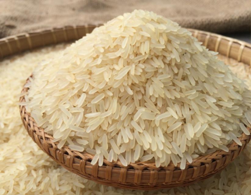 Premium Quality Thai Jasmine Rice, Thai Parboiled Rice 5%, & Japonica Rice