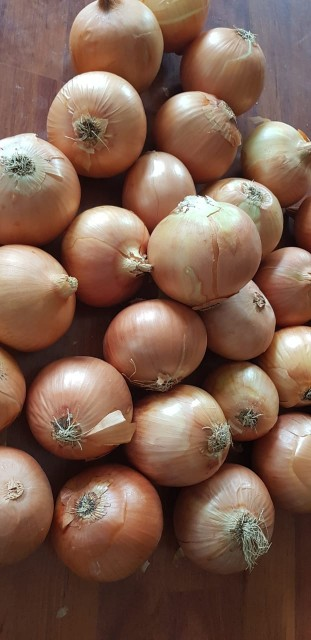 Onion Red and brown