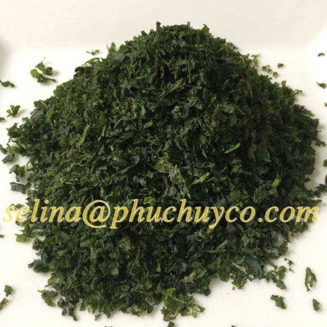 Ulva lactuca seaweed powder / raw for fertilizer production/ animals feed