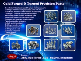 Cold forged & Precision Auto parts