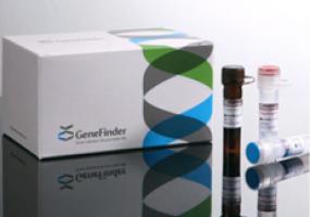 COVID-19 Molecular Diagnositic Kit