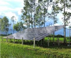 Polycrystalline Solar Modules