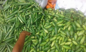 All types of  Agro Vegetables and Fruits