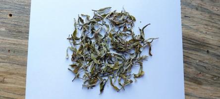 Darjeeling Green Tea